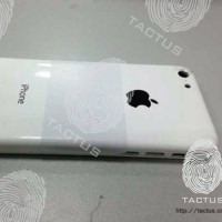 Первое фото пластикового корпуса бюджетного iPhone