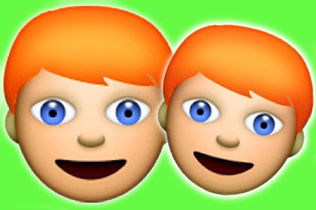 MAIN-Ginger-Emoji